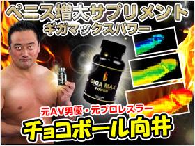 ギガマックスパワー【ペニス増大サプリメントの決定版】